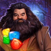 Harry Potter : Puzzles & Spells